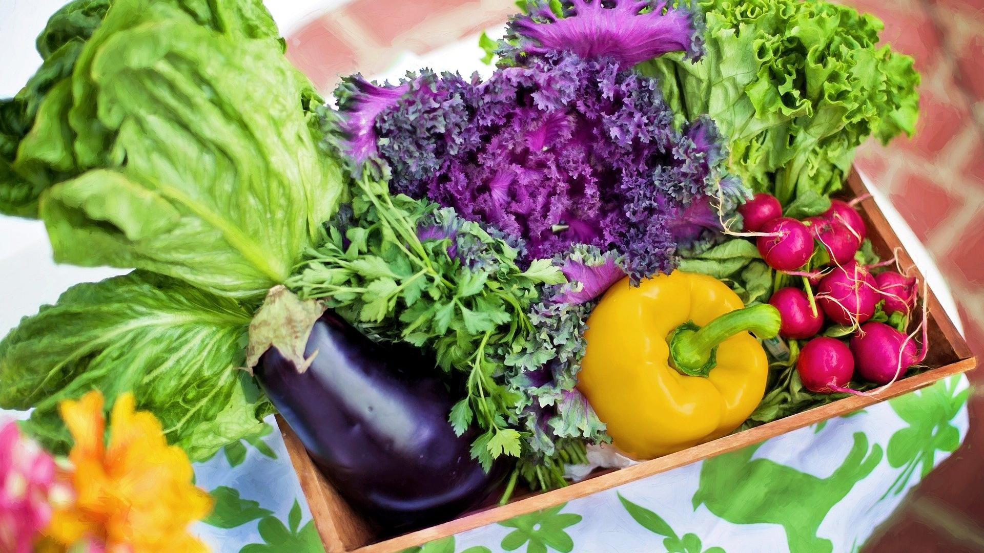 Diety przyśpieszające metabolizm